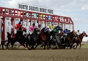 ND Horse Park