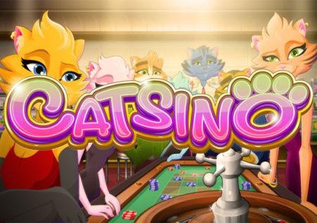 Catsino Slot Game from Rival