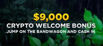 Wild Casino Crypto Bonus
